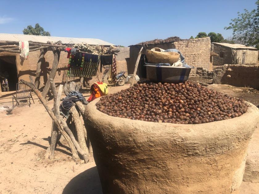 2020-1-1 Bamakoni DfG (135)