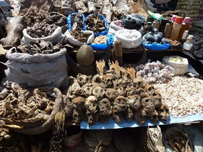 Traditional Medicine and Witchcraft Items SoldHere
