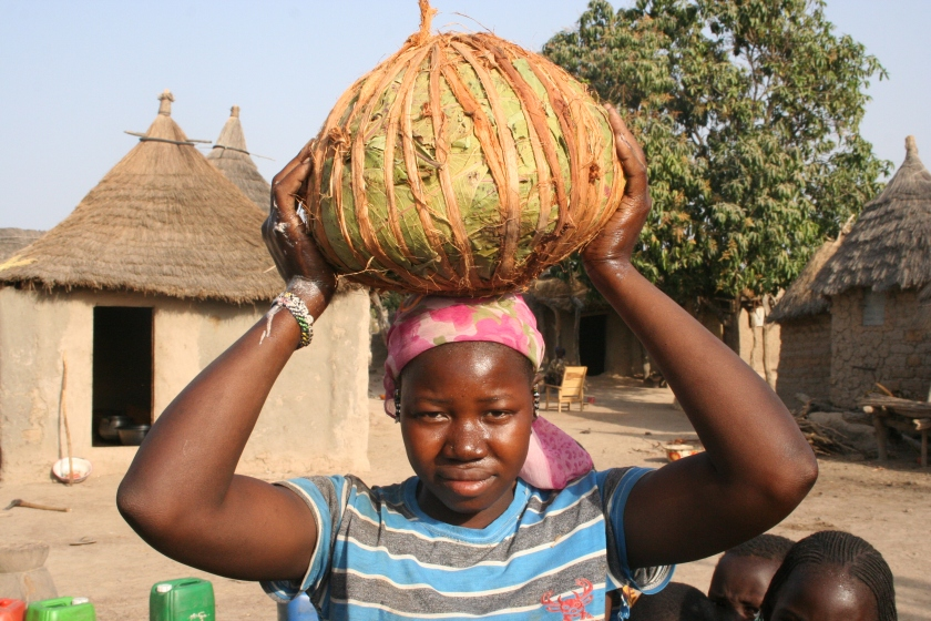 c. Mali Food (0010)
