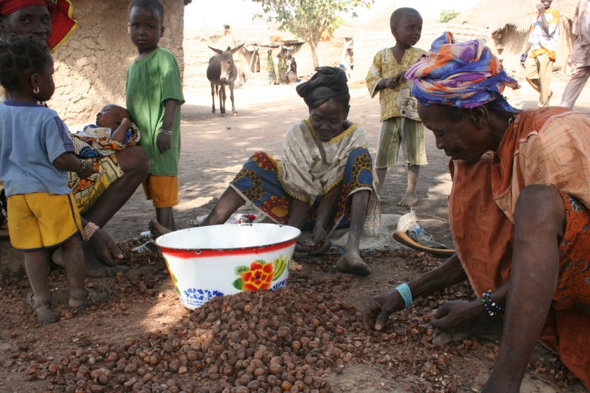 c. Mali Food (005)
