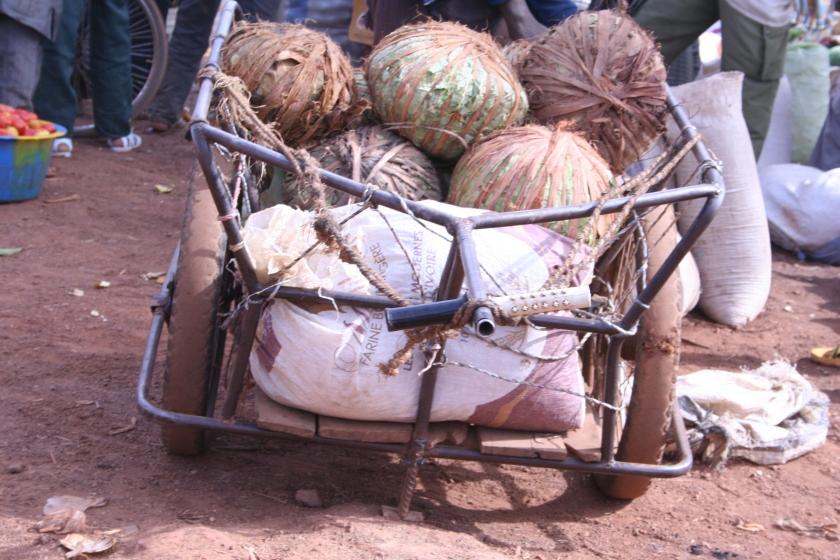 Mali 2010 (1339)