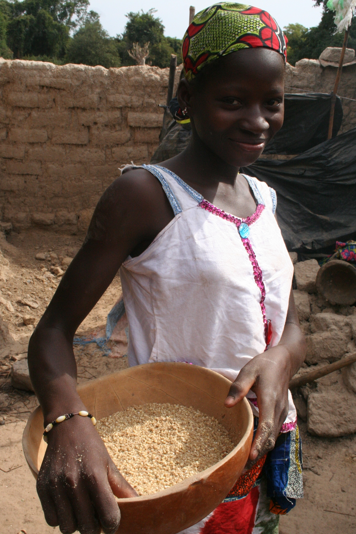 Millet –A Staff of Life in Mali