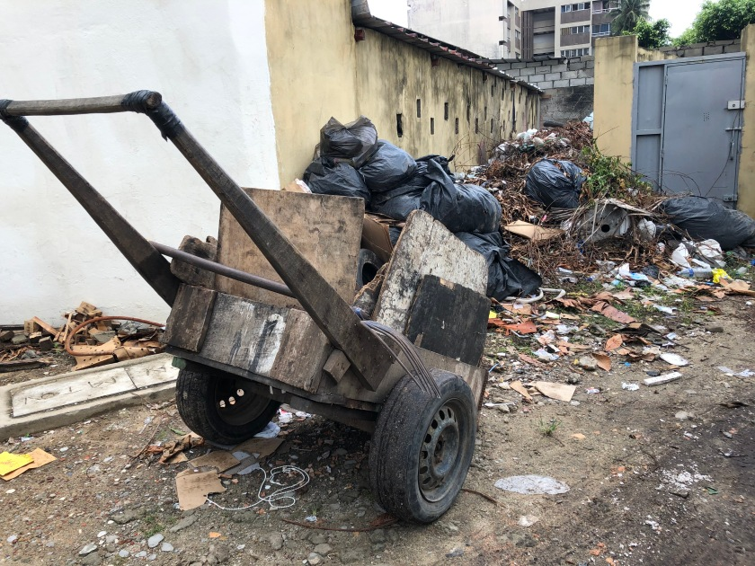 2020-6-12 Trash pickup (3)
