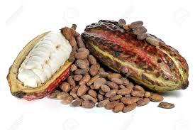 Cacao fruit inside