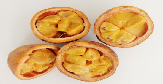 Cocota Fruit.1