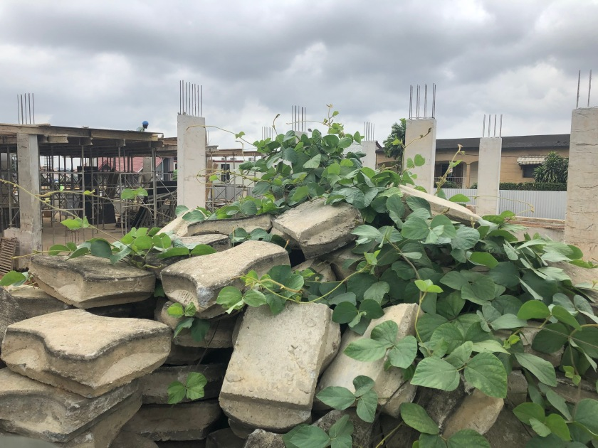 2020-7-28 Temple Site progress (1)